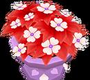 Friendly Flowers Pot (2018)