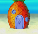 Mini SpongeBob's house