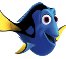 Dory/Gallery
