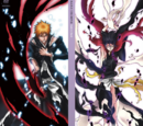 Bleach: Fade to Black Limited Edition DVD Boxset