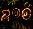 El zoológico/Transcripción