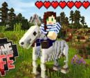 One Life SMP