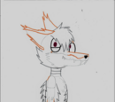 Chaos the coyote