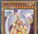 Venus Espléndida