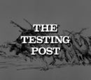 The Testing Post