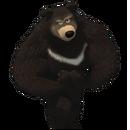Гималайский медведь.png