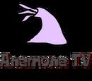 Anemone TV