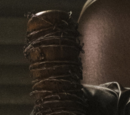 Lucille (Waffe)