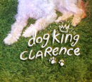 Dog King Clarence