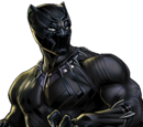 T'Challa (Earth-1010)