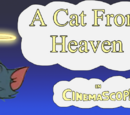 A Cat From Heaven