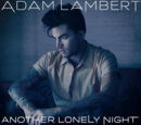 Another Lonely Night (Remixes)