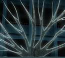 Arte Ninja: Árbol de Agua de Nariz