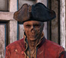 Напарники Fallout 4
