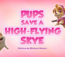 Pups Save a High-Flying Skye