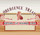 Obedience Trial