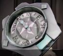 Rogue Sea Dog Compass