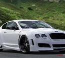 Bentley Platinum Motorsports Continental GT