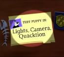 Lights, Camera, Quacktion