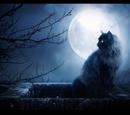 NightClan (Liabowrainbow)