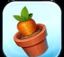 Carrot Plant Token