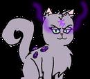 Starfury the Amethyst Cat