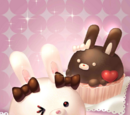 Cute Rabbit Choco