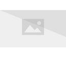 Druid's Staff