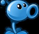 Neptune Pea