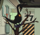 Fiery Bird