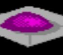 Hierba púrpura