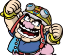 WarioWare, Inc.: Mega Share Game$!