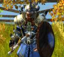 Warrior (Norsemen)