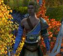 Workshop/Archer (Norsemen)