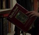 Robin des Bois (livre)