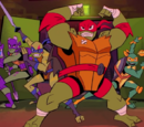Ninja Turtles (Rise of the TMNT)