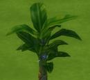 Дерево эмоций