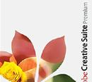 Adobe Creative Suite