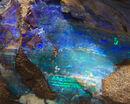 Opal 2 (8030289337).jpg