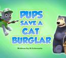 Pups Save a Cat Burglar