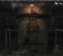 Laboratorium X-19