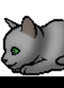 Алоэ (Котёнок).png