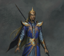 Маги высших эльфов