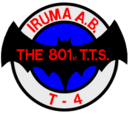 801st Tactical Training Squadron (Team)