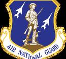 Air National Guard (Team)
