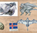 Great Icelandic White Dragon