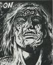 Conan (Earth-TRN672) from Savage Sword of Conan Vol 1 176 0001.png
