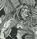 Conan (Earth-TRN671) from Savage Sword of Conan Vol 1 176 0001.png