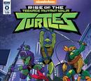 Rise of the Teenage Mutant Ninja Turtles issue 0