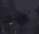 Ominous Woods